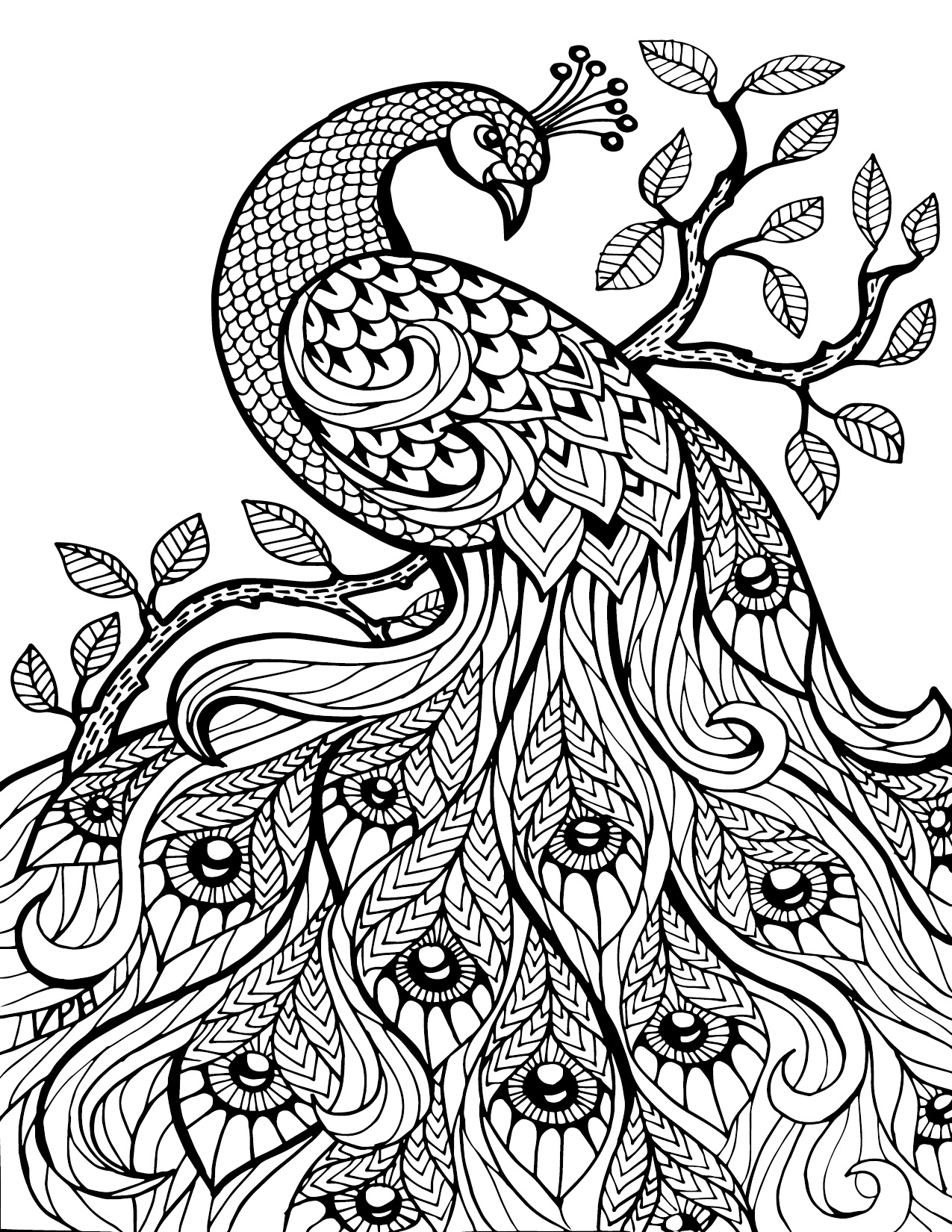 Coloring Pages Pdf : Free download adult coloring pages