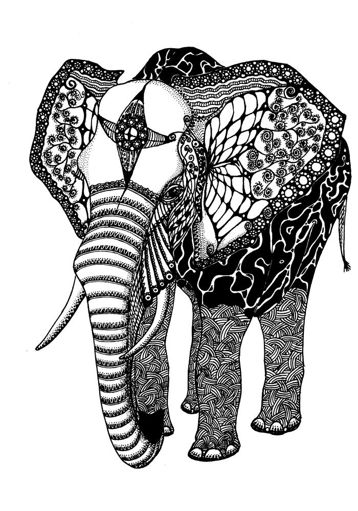 african elephant coloring pages for adults - Coloring Pages Indian Elephants