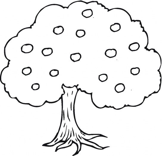 Apple Preschool Coloring Pages