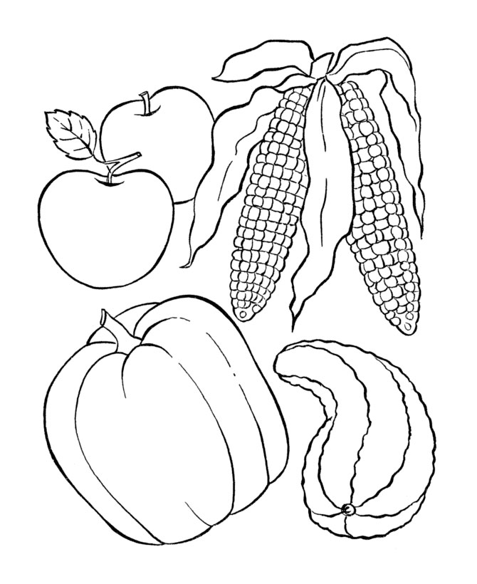 Best Cornucopia Preschool Coloring Pages