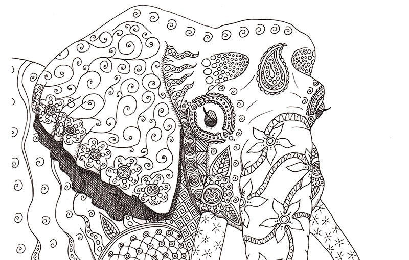 Difficult Coloring Pages Elephants