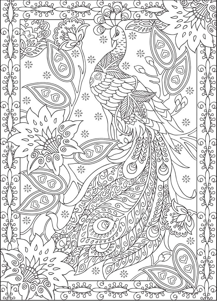 Difficult Coloring Pages Peacock