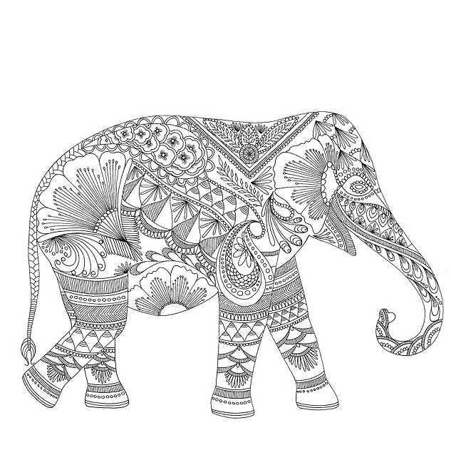 elephant coloring pages for adult - Coloring Pages Indian Elephants