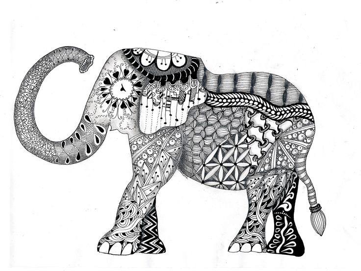 Coloring Picture Elephant Download Pages For Adults