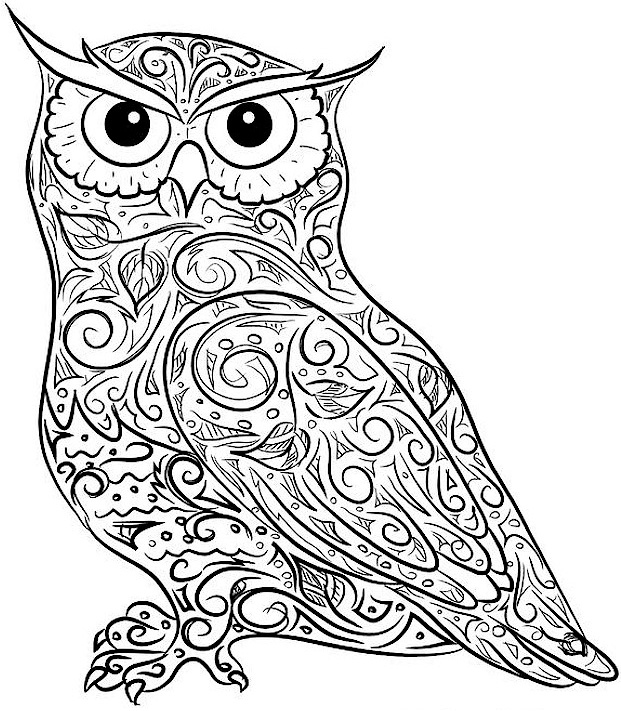 Owl Coloring Page For Adult