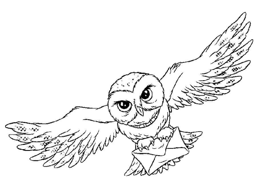 Owl Coloring Pages For Adult Free