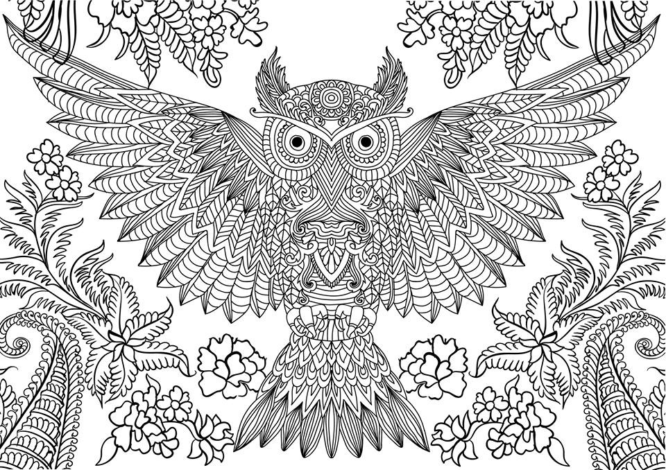 10 difficult owl coloring page for adults for Hard printable coloring pages