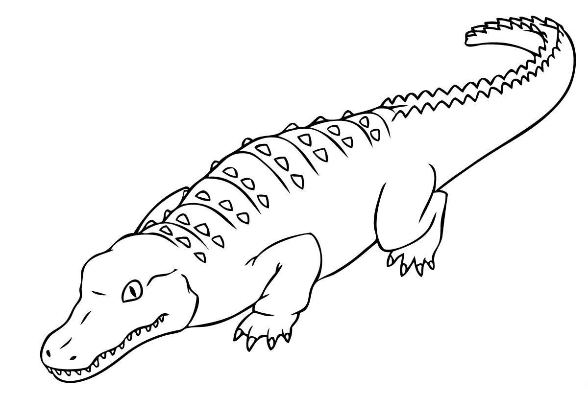 Uncategorized Crocodile Coloring Pages To Print crocodile coloring pages to print pages