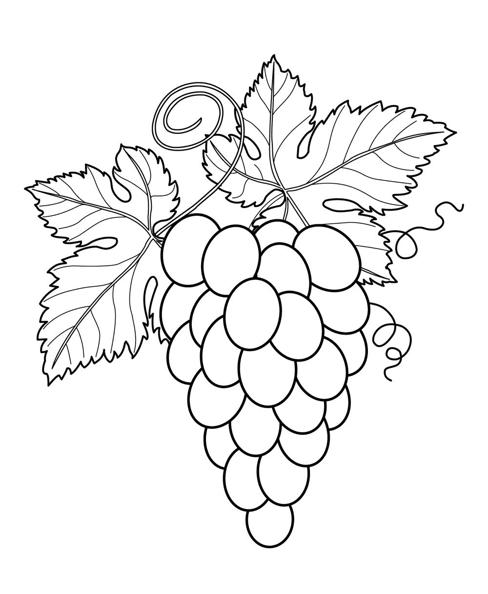 fruits coloring pages printable