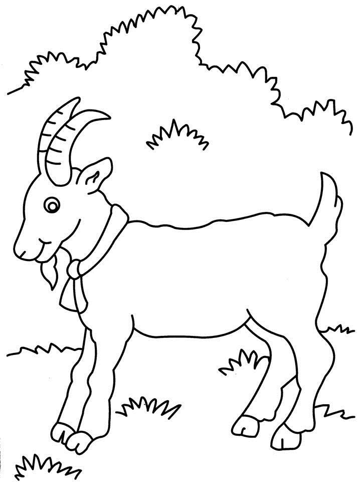 goat coloring pages printable