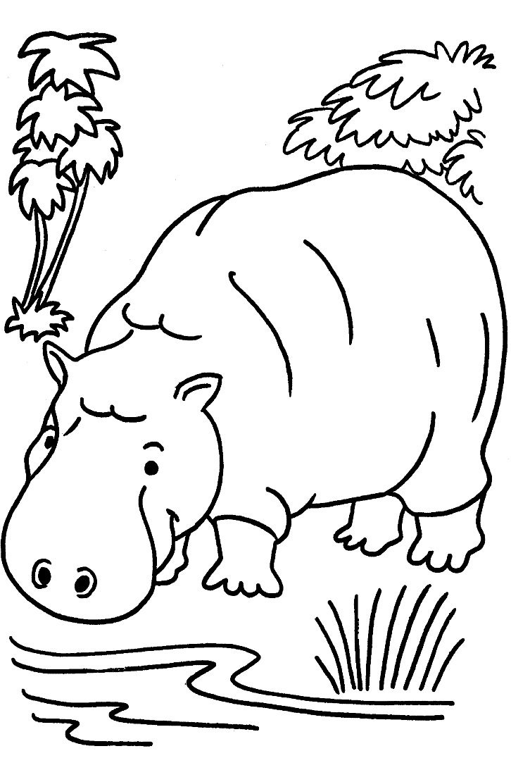 simple jungle animal coloring pages - photo#7