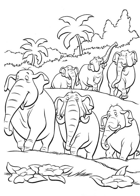 Jungle Coloring Pages Download