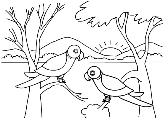simple jungle animal coloring pages - photo#13