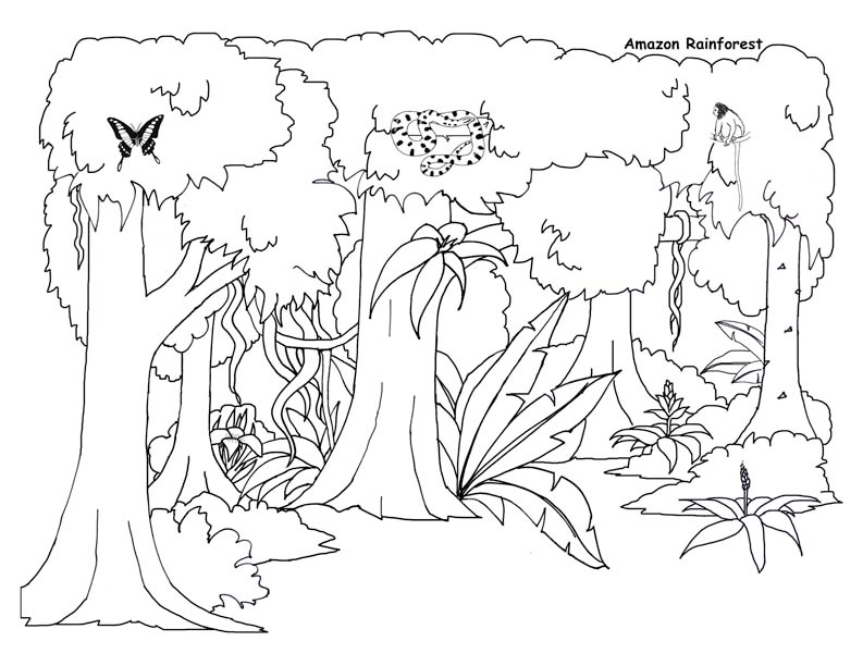 jungle background coloring pages - photo#7