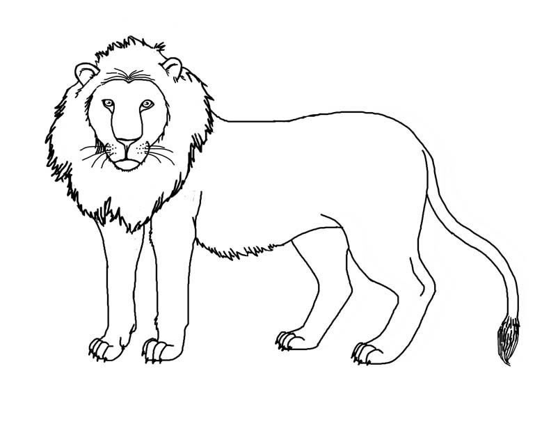 lion coloring pages king characters simba and nala to print