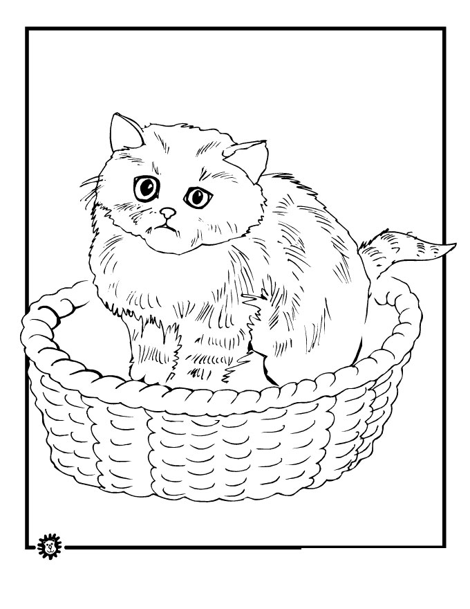 Pictures Of Cat To Coloring