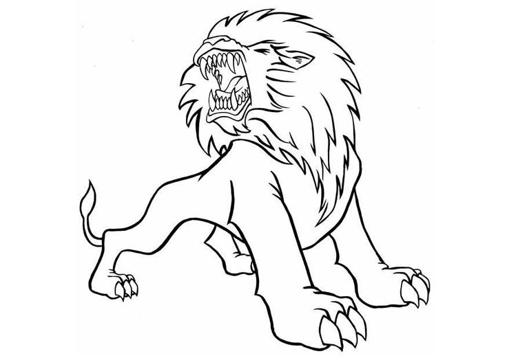 Roaring Lion Coloring Pages