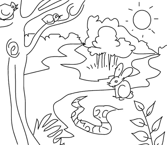 Simple Jungle Coloring Pages