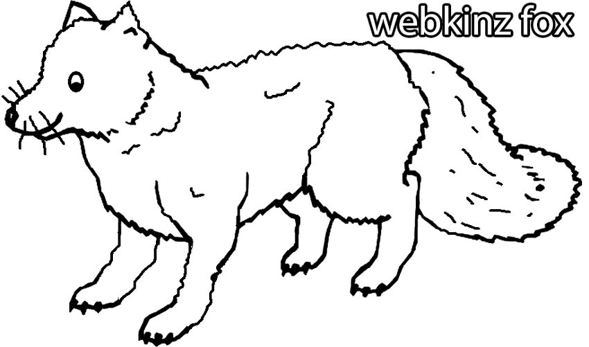 Webkinz Fox Coloring Pages