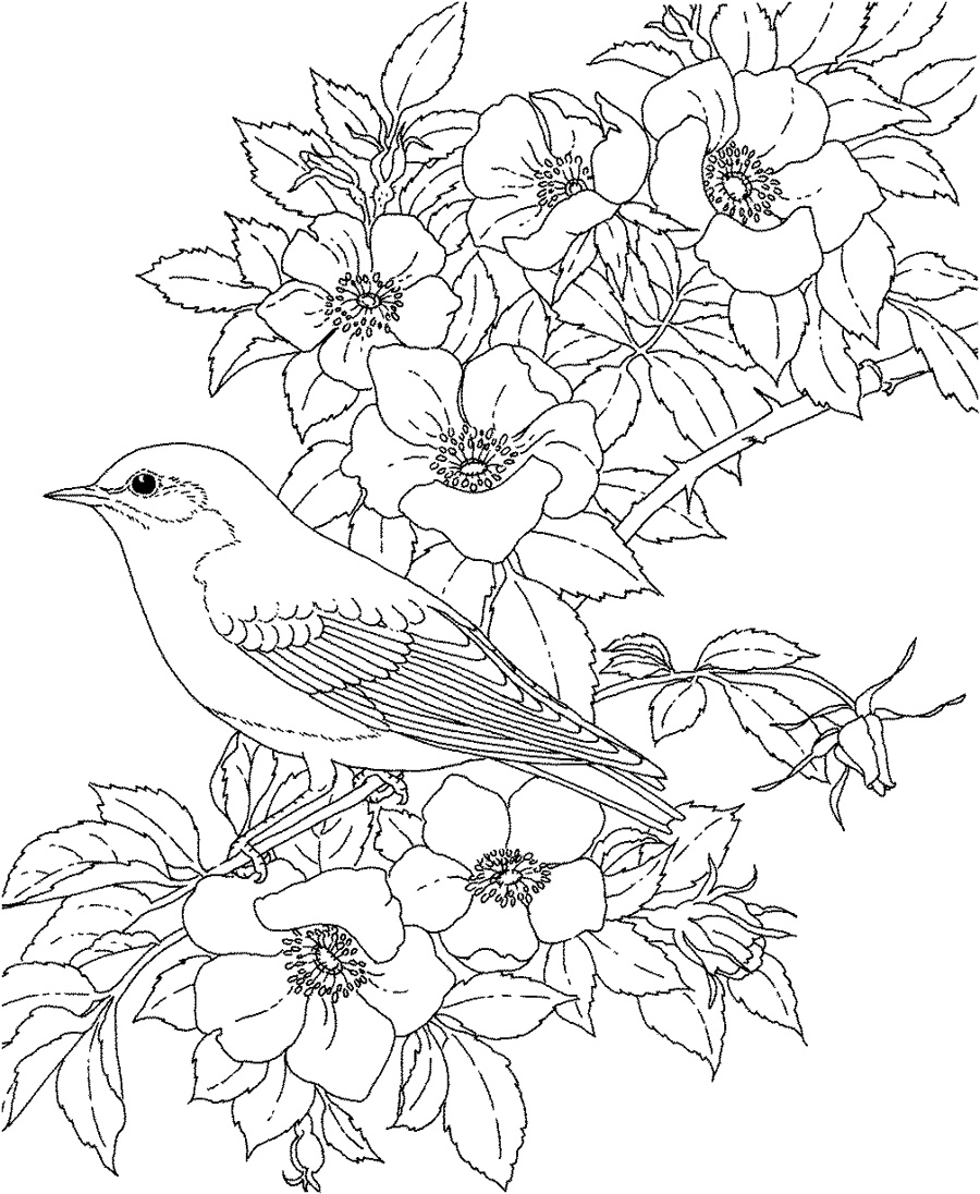 Flower coloring pages for adults Coloring book for adults free download