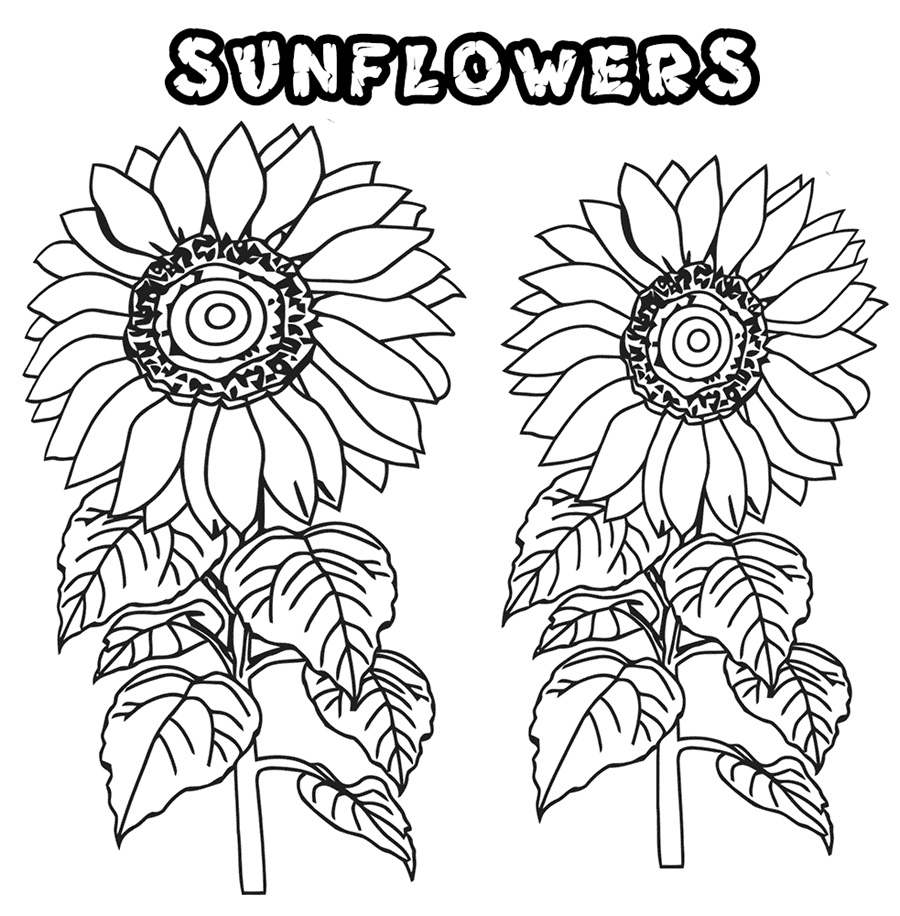 sunflower coloring pages for adults - Detailed Sunflower Coloring Pages