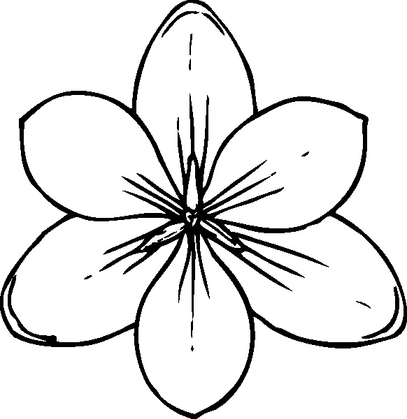 flower coloring pages to print out - Flowers To Print And Color