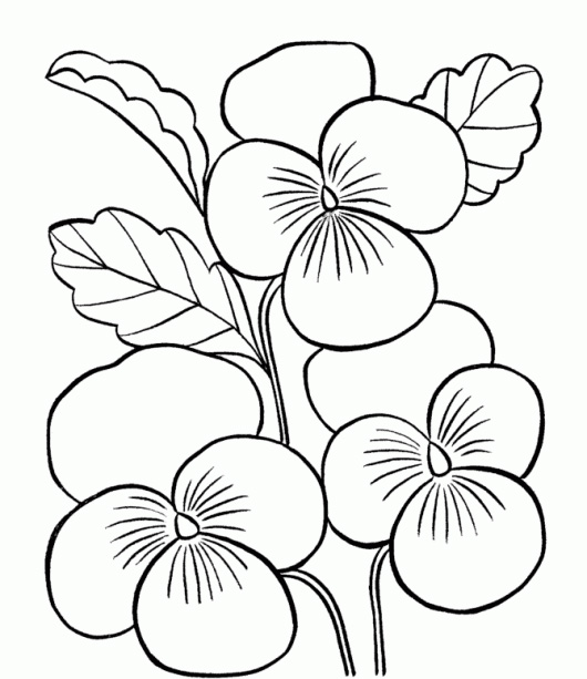 Flower Printables Coloring Sheets