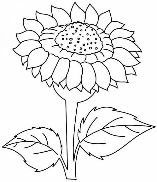 sunflower coloring pages - 25 flower coloring pages to color