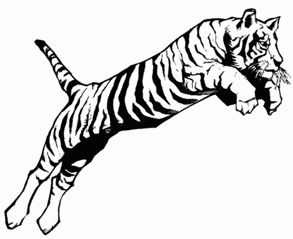 printable tigers coloring pages - photo#20
