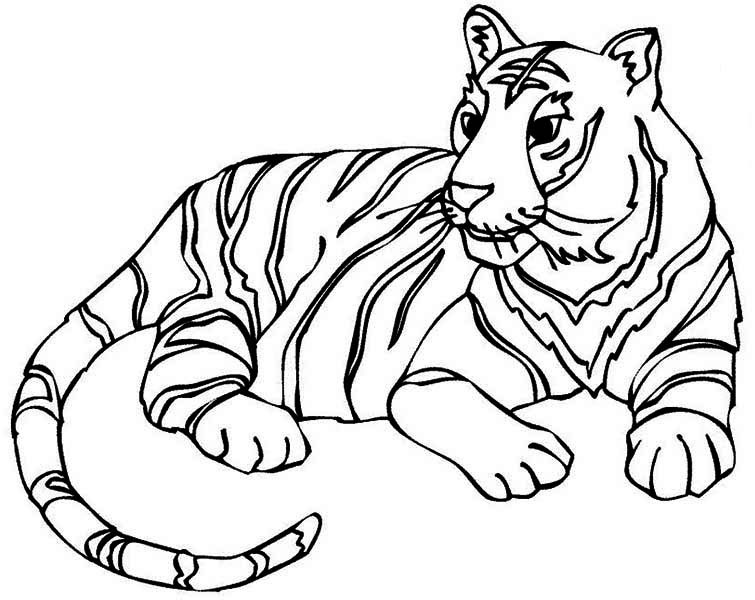 Baby Tiger Coloring Coloring Pages
