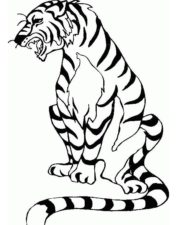 Baby Tiger Coloring Pages Coloring Pages