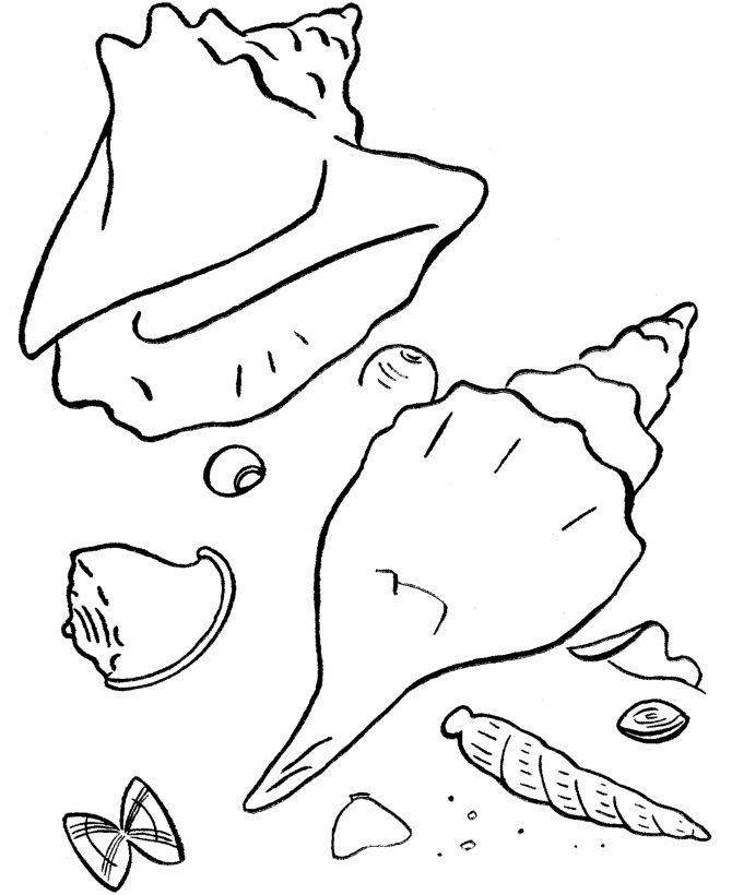 summer-beach-coloring-pages-for-kids