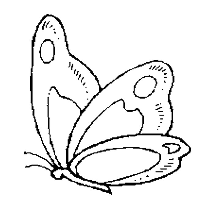 butterfly-coloring-pages-free-download