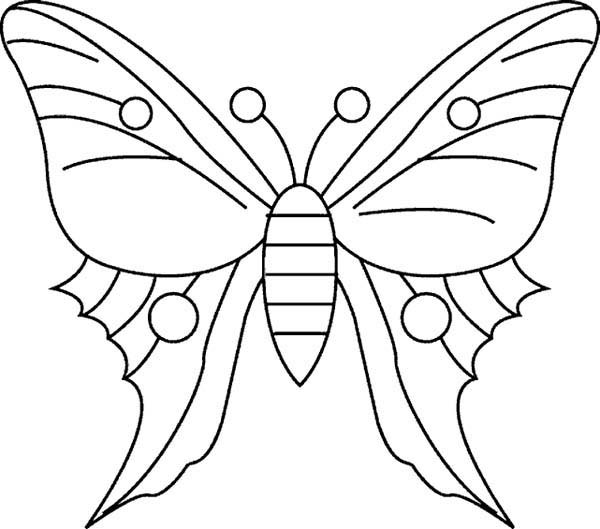 butterfly-coloring-pages-printable