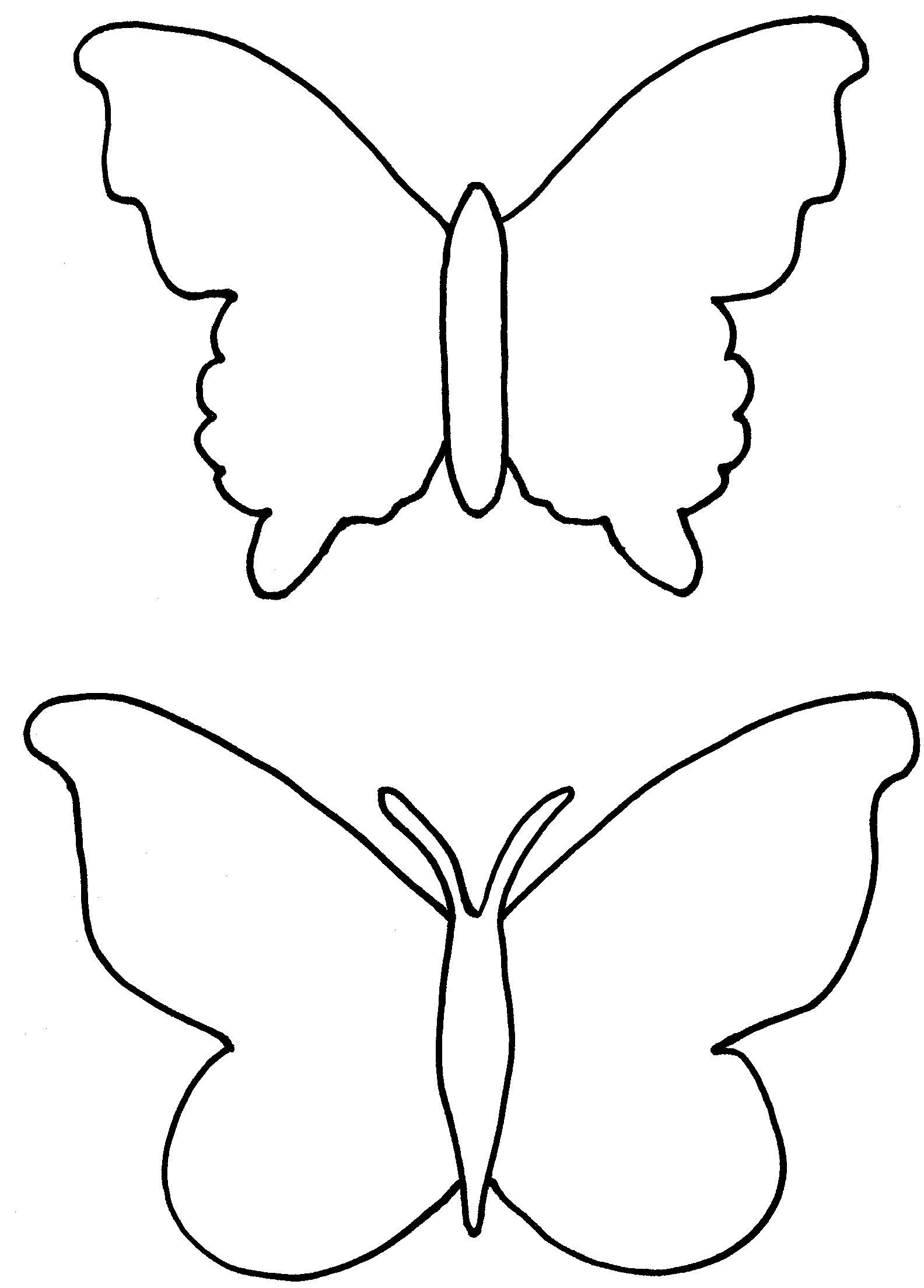 Butterfly cocoon coloring pages - Butterfly Cocoon Coloring Pages 44