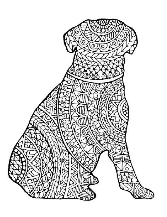 Coloring Pages For Adults Animals