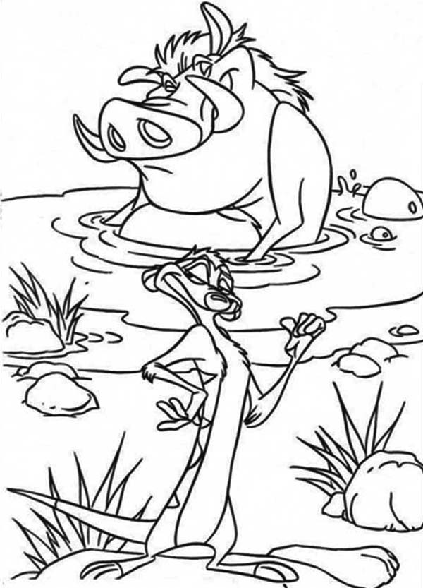 Lion King Coloring Pages Timon and Pumbaa