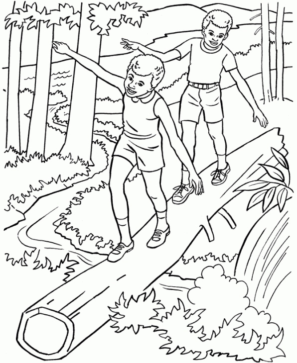 Nature Coloring Pages For Adults Download