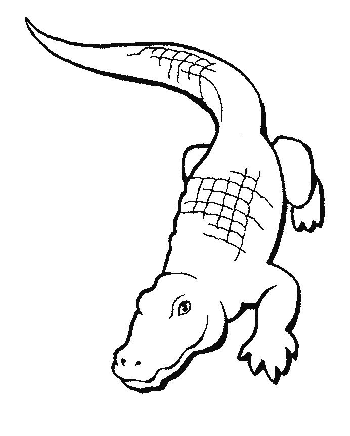 Cartoon Crocodile Coloring Pages