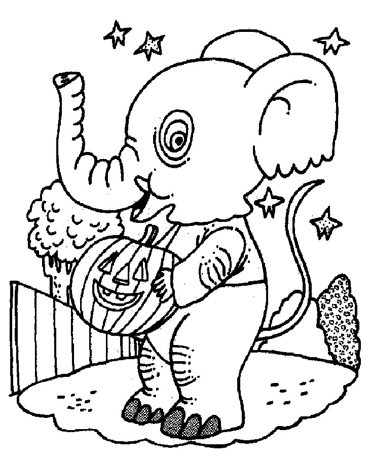 Amazing Elephant Coloring Pages