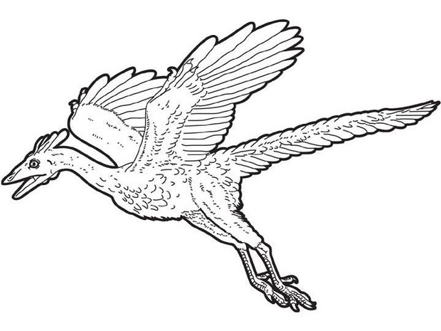 Flying Dinosaur Coloring Pages