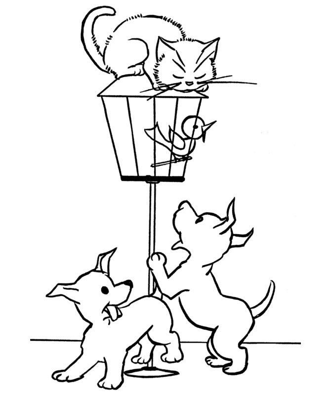 Cat Coloring Picture