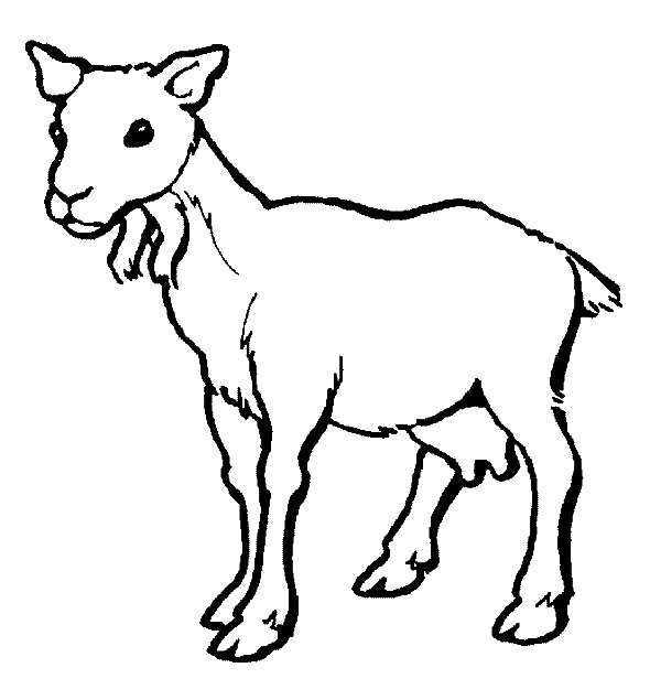 Goat Coloring Pages Download