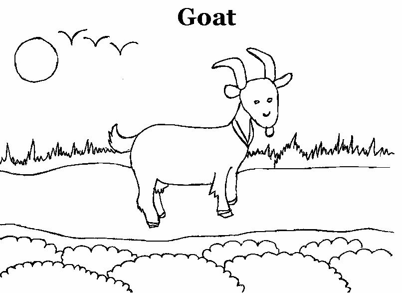 Goat Coloring Pages kindergarten