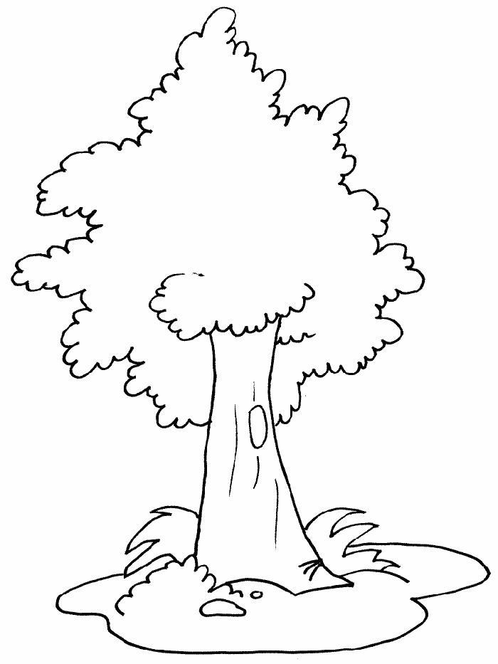 Jungle Tree Coloring Pages