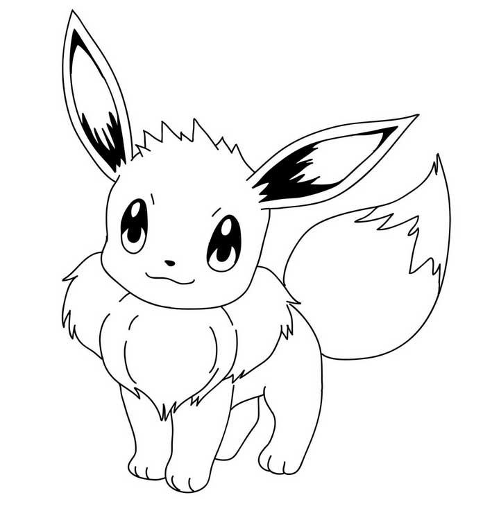 eevee Pokemon