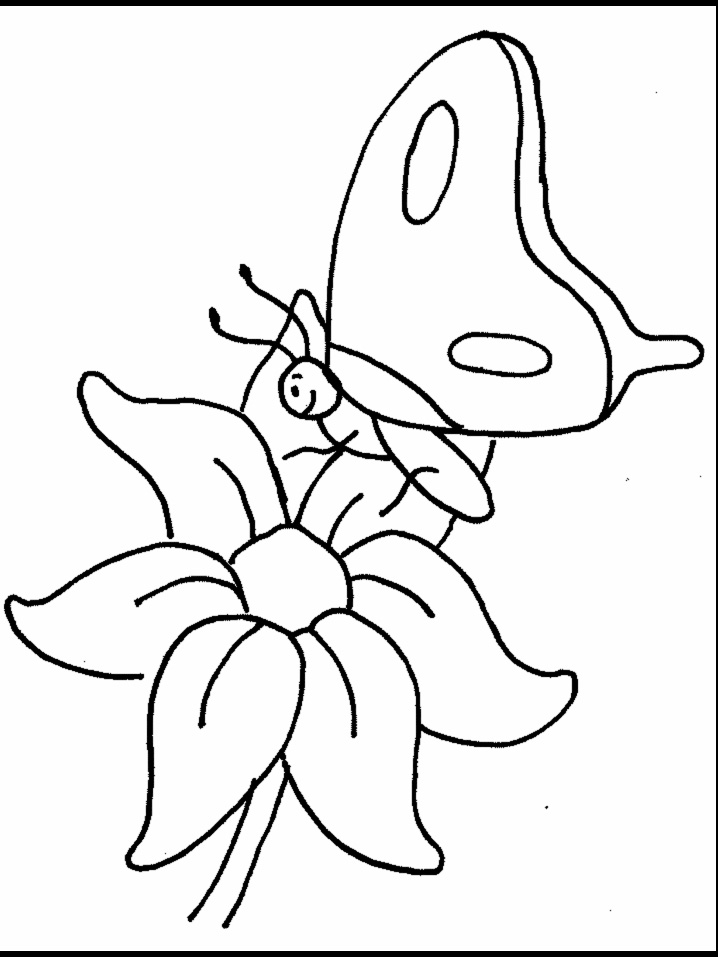 Flower And Butterflies Coloring Pages