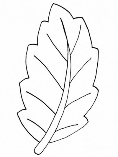 Leaves Coloring Pages Free Download